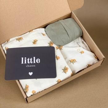 Birth gift set . Litlle boy